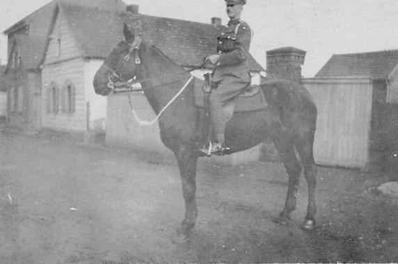 FGA Horse